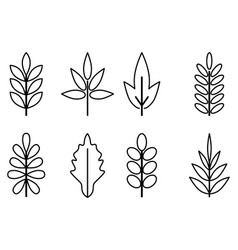 Leaves line vector