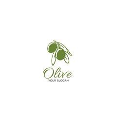 olive leaf vector image