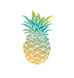 pineapple modern vector image