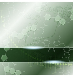 science background with molecules vector image