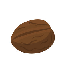 walnut nuts icon flat style isolated on white vector image vector image