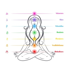 Seven chakras on body woman silhouette vector image