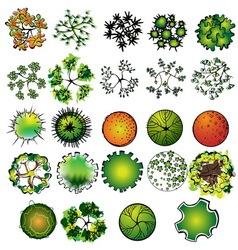 a set colored treetop symbols vector image