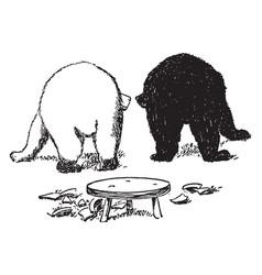 Bears 15 vintage vector