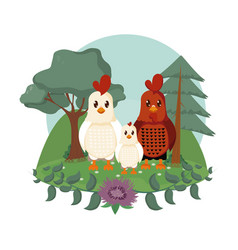 chicken and rooster cute animals cartoons vector image