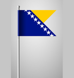 flag of bosnia and herzegovina national flag on vector image