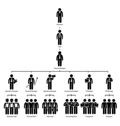organization chart tree company corporate vector image