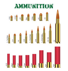 Real set many types gun ammunition vector