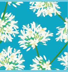 Snow white agapanthus on blue background vector
