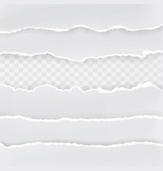 torn hole in sheet of paper transparent vector image