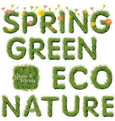 Green Grass Spring and Ecology Word vector image