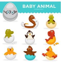 baby animals hatch eggs cartoon pets hatching vector image vector image