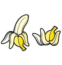 peeled banana and banana vector image