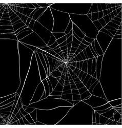 Seamless pattern with spider web vector image