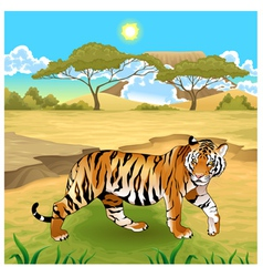 African landscape with tiger vector image