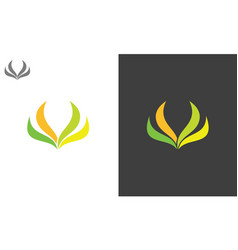 leaf beauty logo vector image