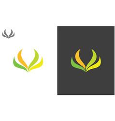 leaf beauty logo vector image