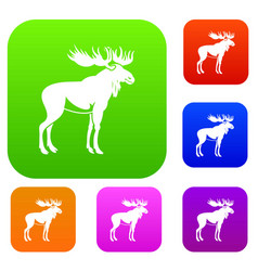Moose set collection vector