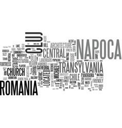 Napoca word cloud concept vector
