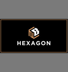 nb hexagon logo design inspiration vector image