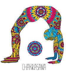 Pose in yoga of chakrasana vector