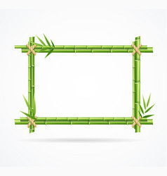 Realistic 3d detailed green bamboo frame vector