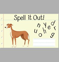 Spell english word greyhound vector