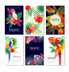 Tropical design cards collection vector