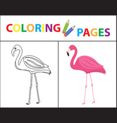 coloring book page flamingo sketch outline and vector image