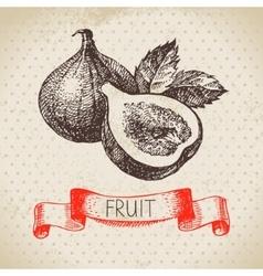 Hand drawn sketch fruit fig Eco food background vector image vector image