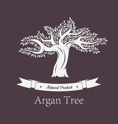 argania plant or argan tree with foliage vector image