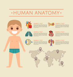 human body anatomy poster with smiling kid vector image