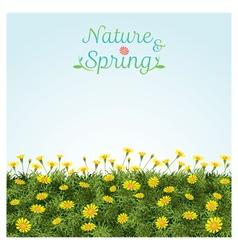 Flowers Spring Field Season Background vector image vector image
