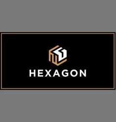 Ng hexagon logo design inspiration vector