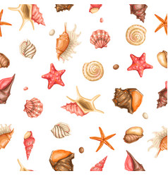 seamless pattern with seashells tropical vector image