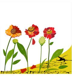 Summer flowersbuds and falling petals vector