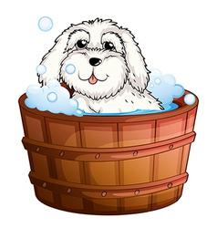A puppy taking a bath vector image