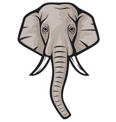 indian elephant head vector image vector image