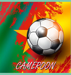 soccer ball on cameroon flag background vector image