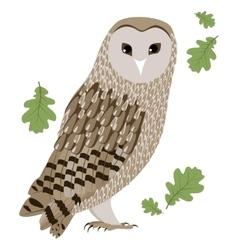 A barn owl vector