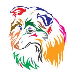 Colorful decorative portrait of dog sheltie vector