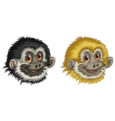 Gibbon faces vector image