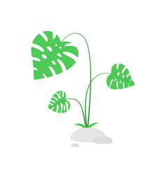 green bush with tropical leaves vector image