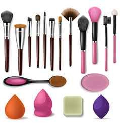 makeup brush professional beauty applicator vector image