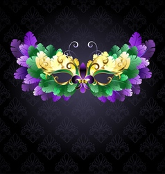 Mardi Gras Mask of Feathers vector image