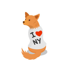 pedigree dog in a white shirt with an inscription vector image