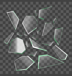 realistic shards of broken glass vector image
