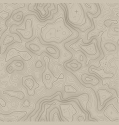 Seamless pattern topographic map background with vector