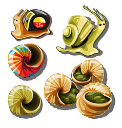 set objects on subject snails vector image