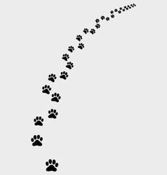 Trail cat 2 vector